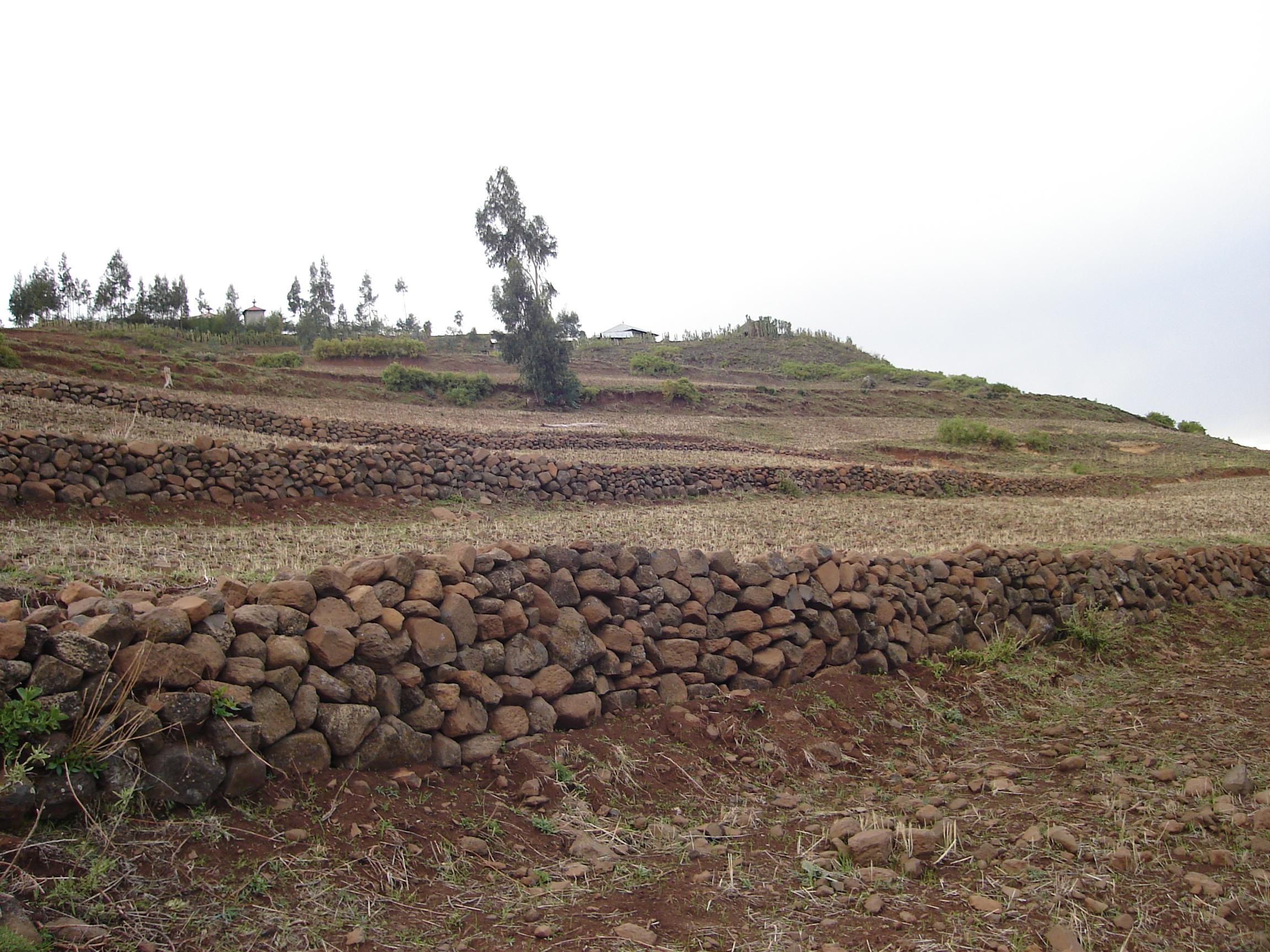 Form bunds to prevent soil erosion - farmsio