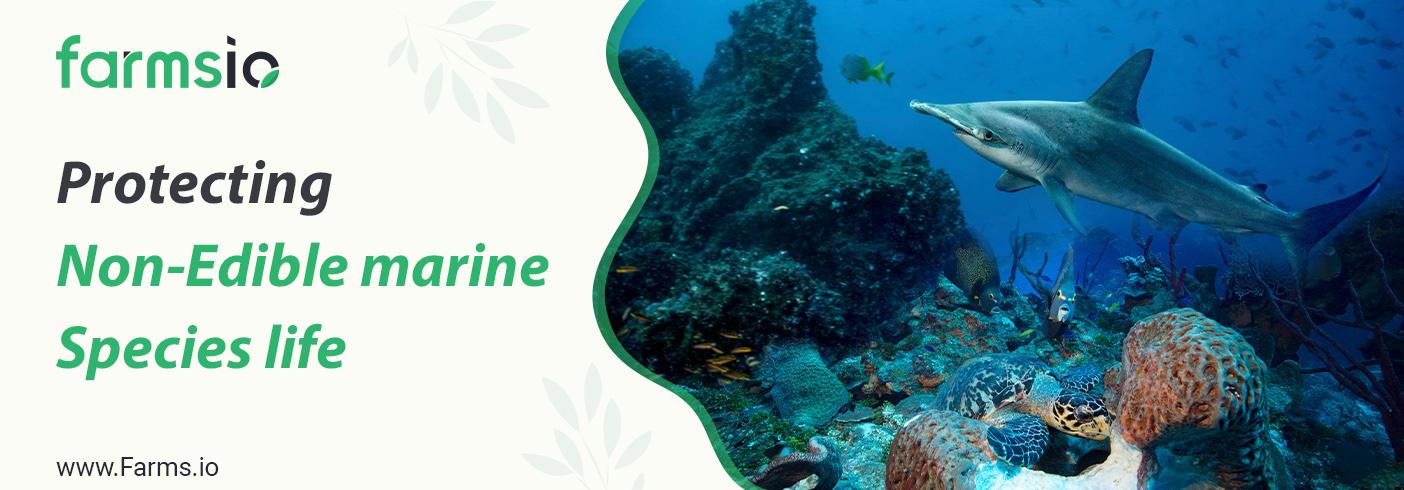 Protecting Non-Edible marine Species life