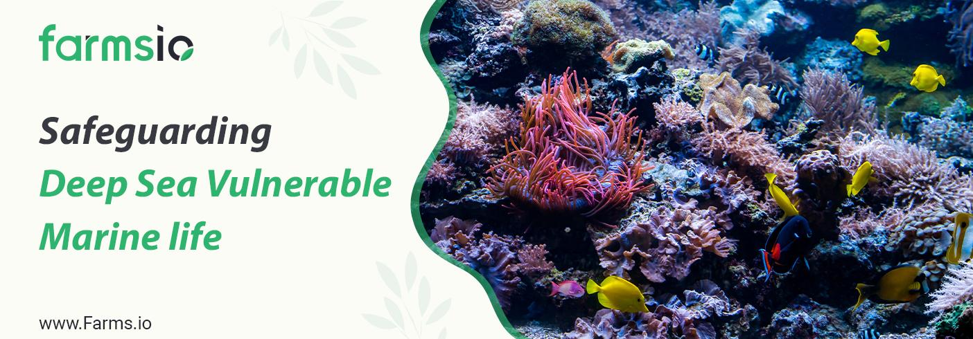 Safeguarding Deep Sea Vulnerable Marine life